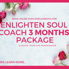 Enlighten Soul Coach 4